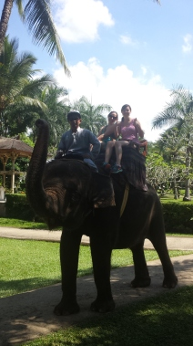 Elephant Rider Tour!
